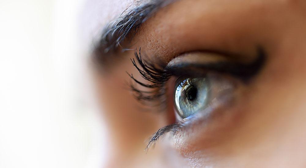 Göz Nedir