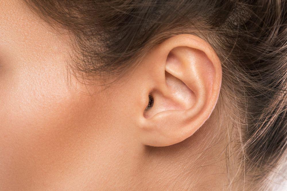 Kulak Nedir?